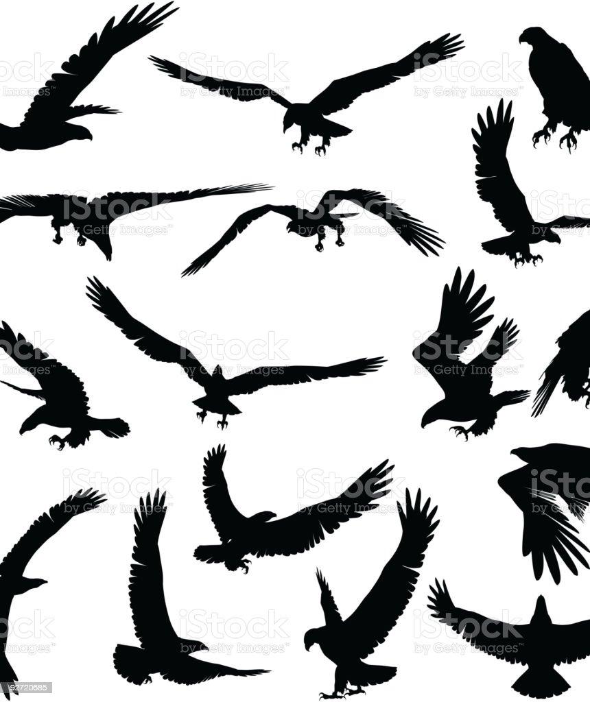 Eagle silhouette vector art illustration