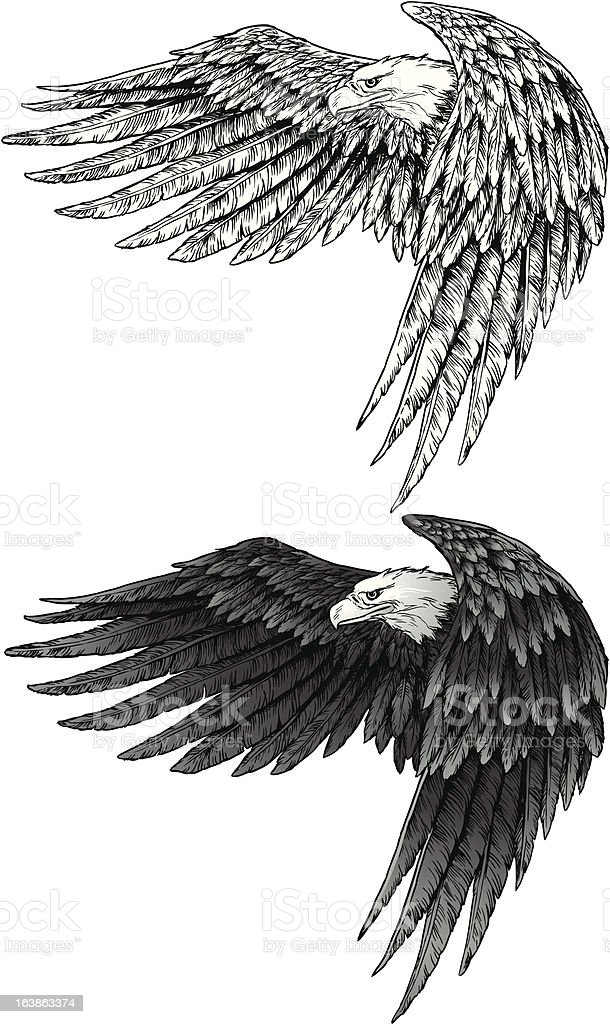 Eagle with wings royalty-free stock vector art
