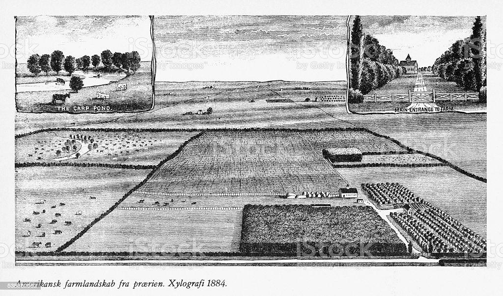 Early American Prairie Farm Engraving, 1884 vector art illustration