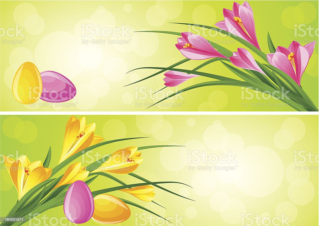 Early spring flower crocus and easter eggs royalty-free stock vector art