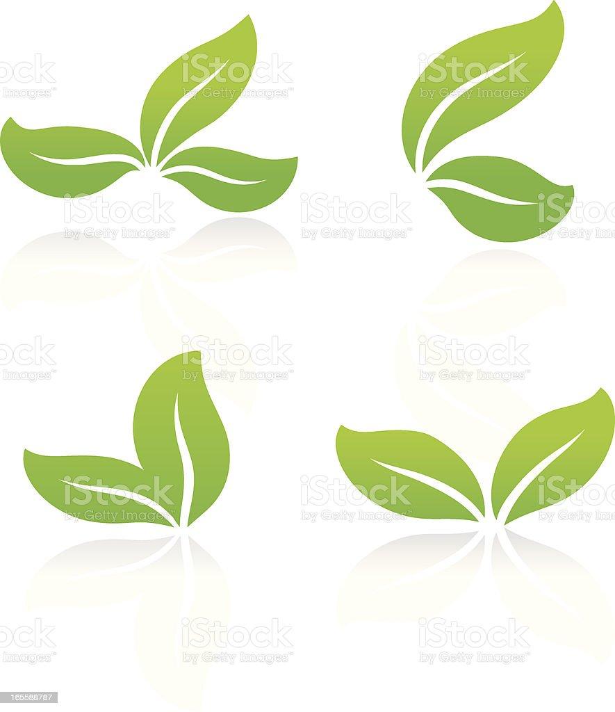 Eco leaves vector art illustration