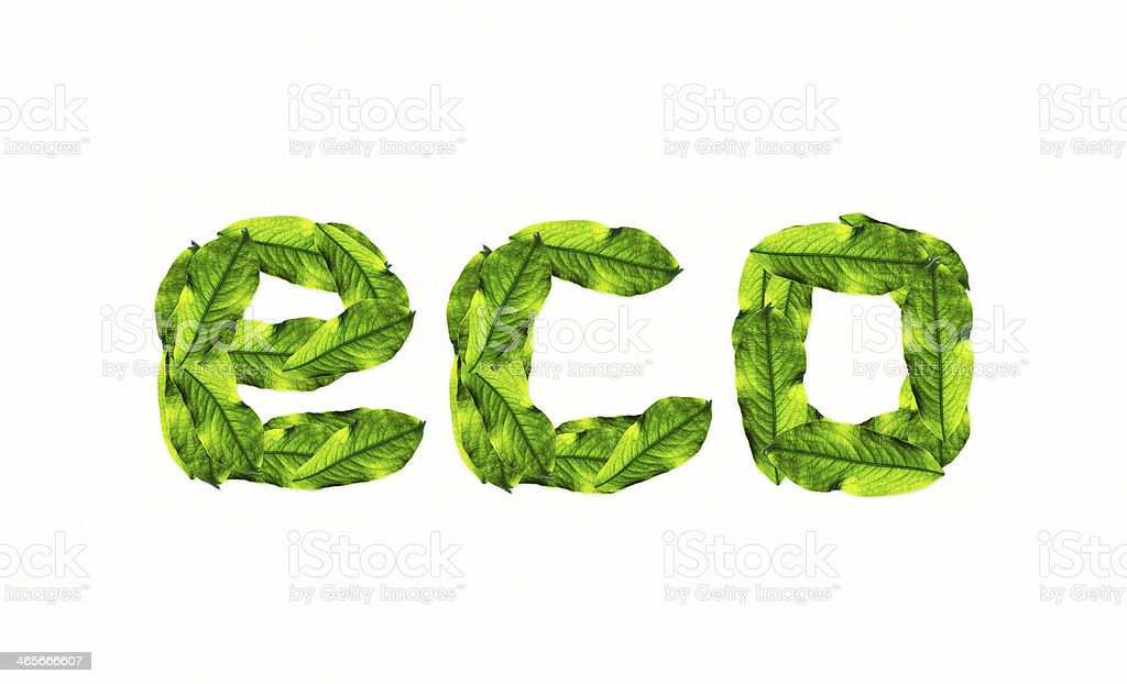 eco, with green leafs texture royalty-free stock vector art