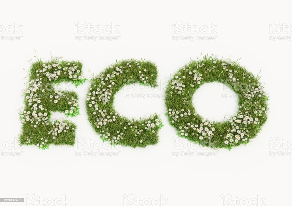 Eco word typed by flowers and grass vector art illustration