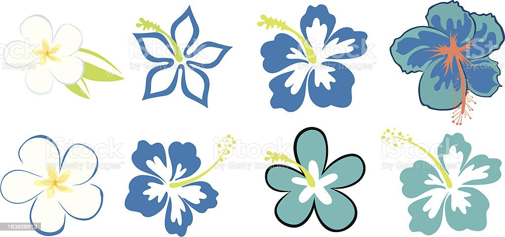 eight hibiscuses vector art illustration