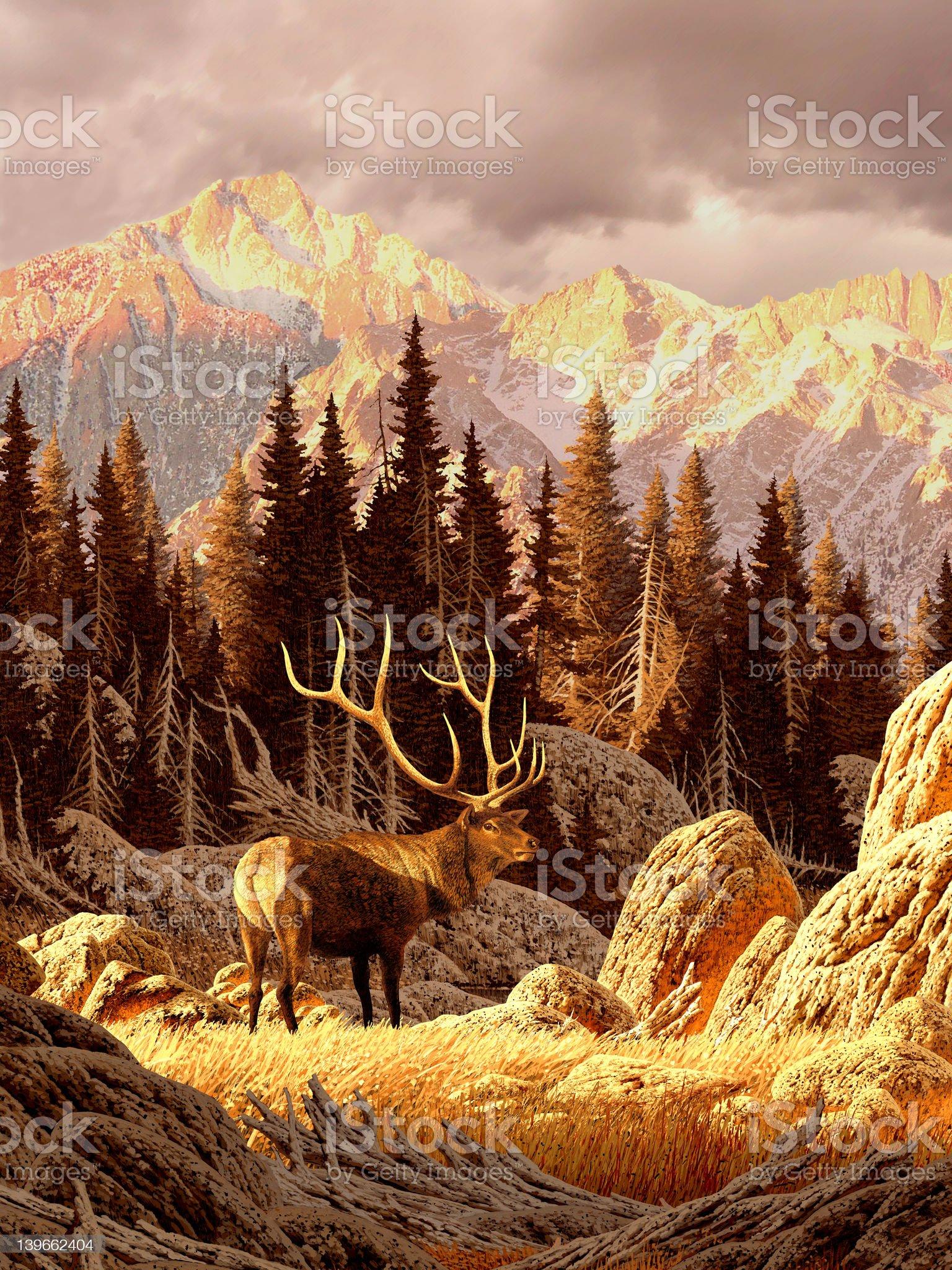 Elk in the Rockies royalty-free stock vector art