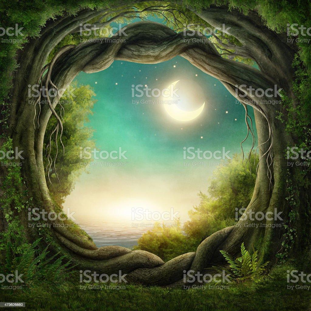 Enchanted dark forest vector art illustration