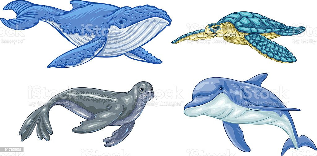 Endangered Spieces - Marine Life vector art illustration