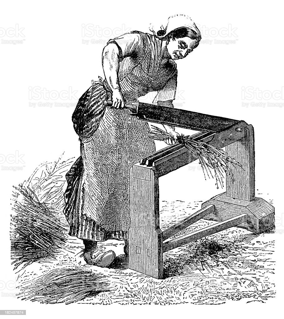 Engarving woman working with scutcher on flax vector art illustration