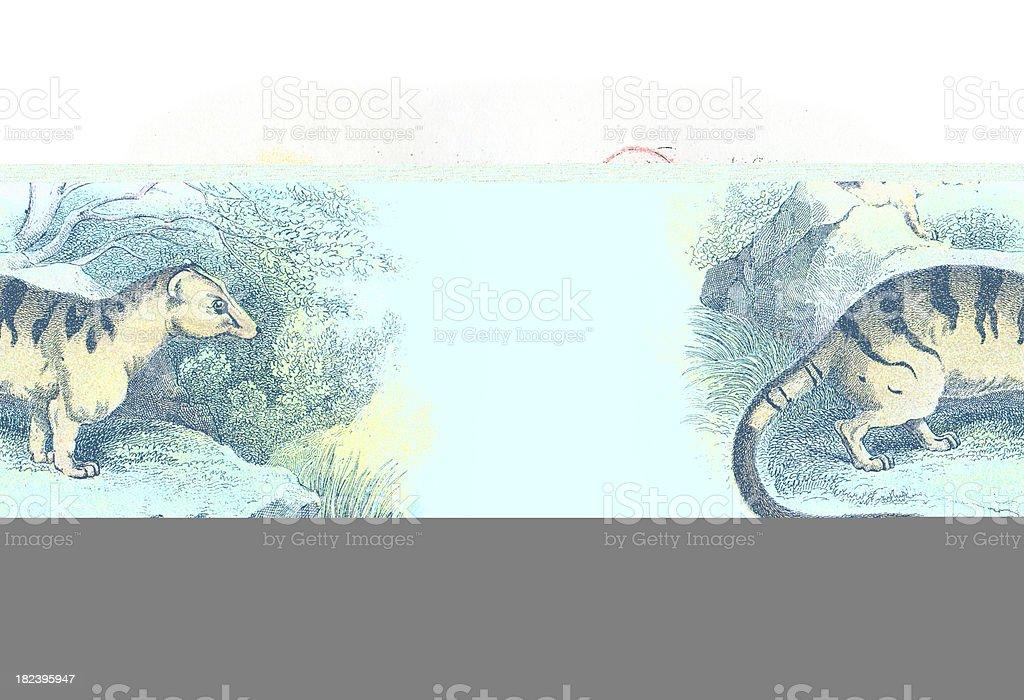 English Lake District  - Buttermere vector art illustration