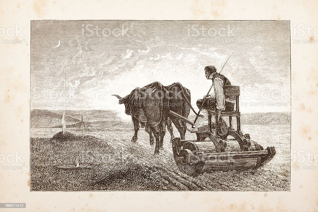 Engraving farmer plowing a field with two cows vector art illustration