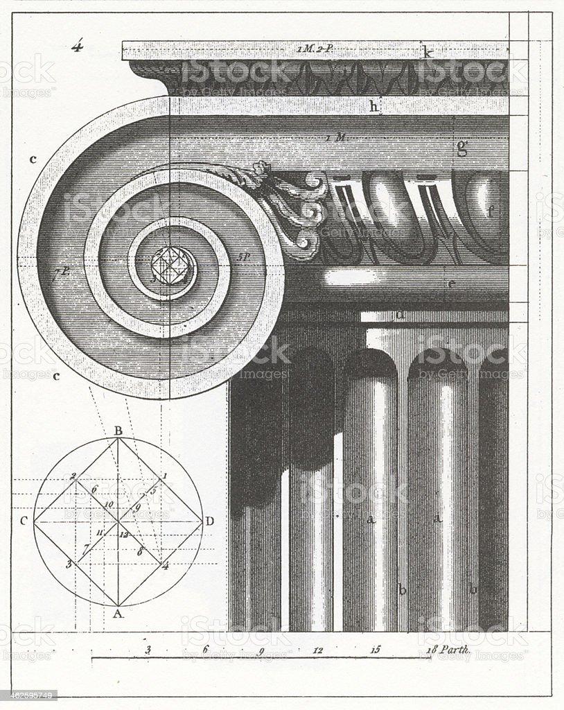 Engraving: Ionic Column vector art illustration
