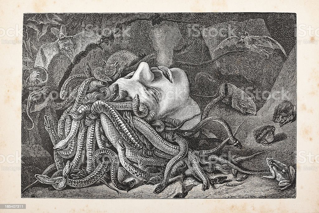 Engraving Medusa head lying on floor from 1875 vector art illustration