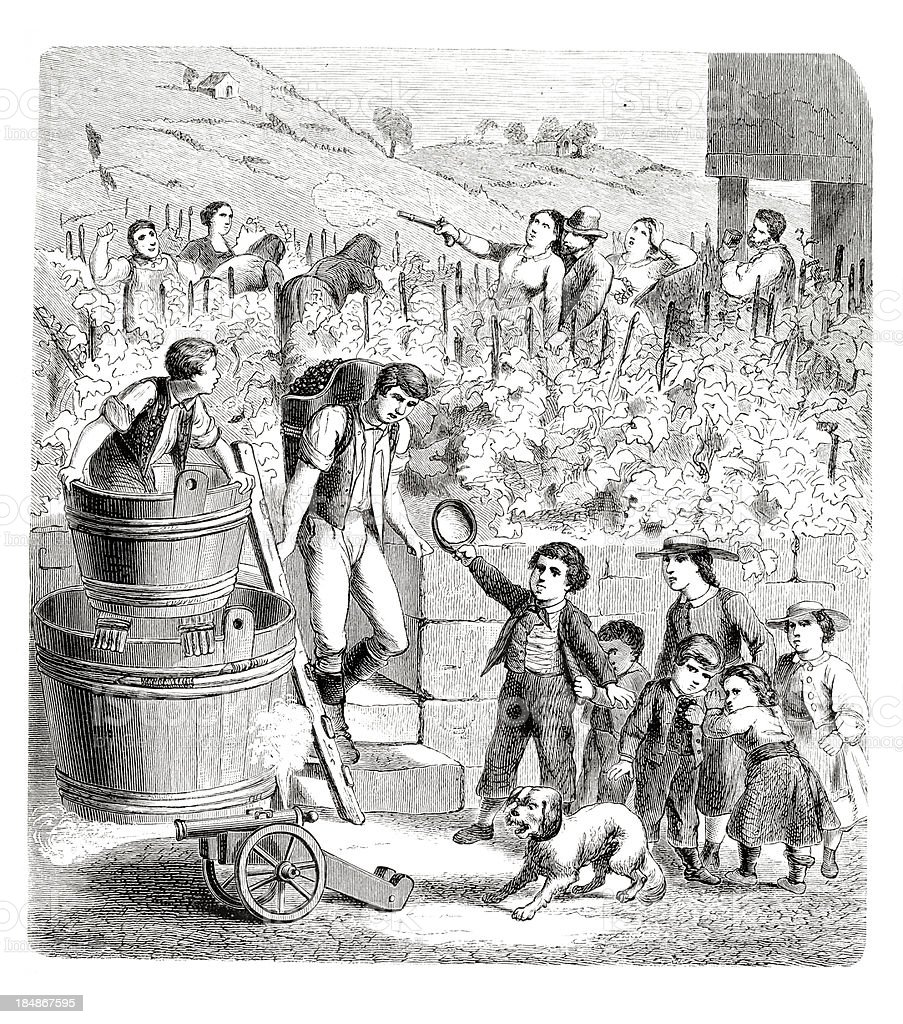 Engraving men harvesting on vineyard 1835 vector art illustration