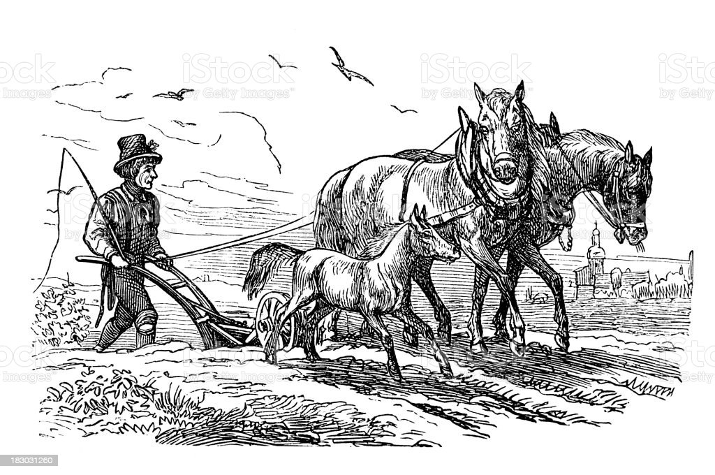 Engraving men plowing a field with two horses vector art illustration