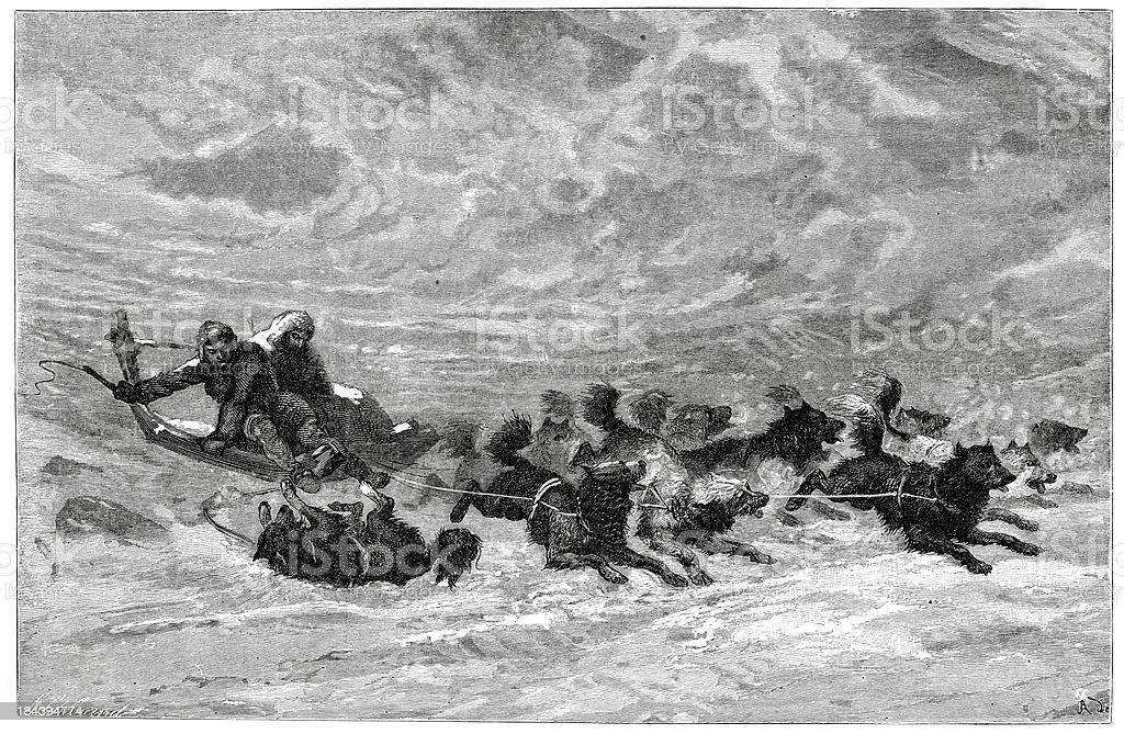 Eskimo sledge and team of dogs vector art illustration
