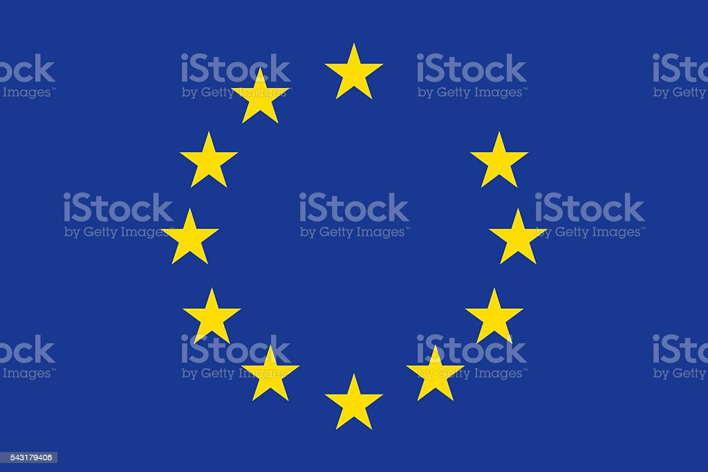 European Union Flag with Great Britain Star Removed vector art illustration