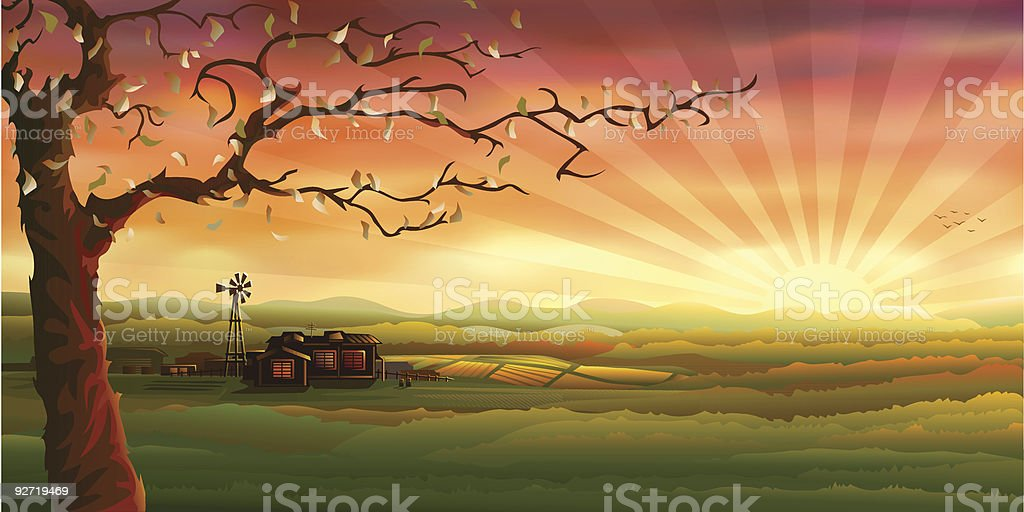 Evening rural scenery and an autumn tree vector art illustration