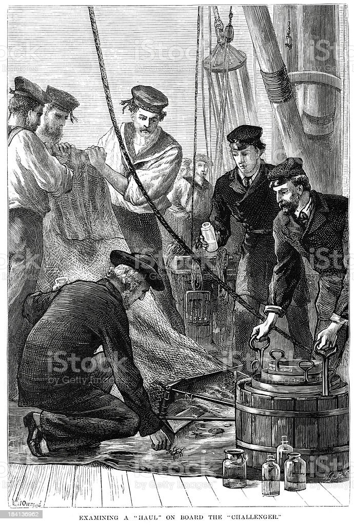 Examining a haul on HMS Challenger royalty-free stock vector art