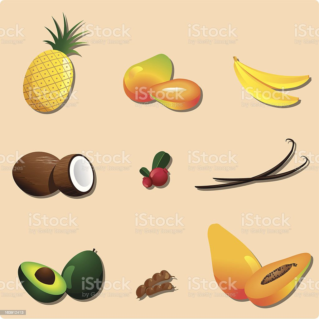Exotic fruits vector art illustration