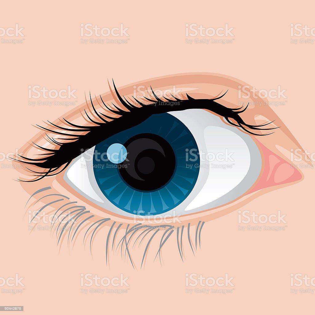 Eye Closeup vector art illustration