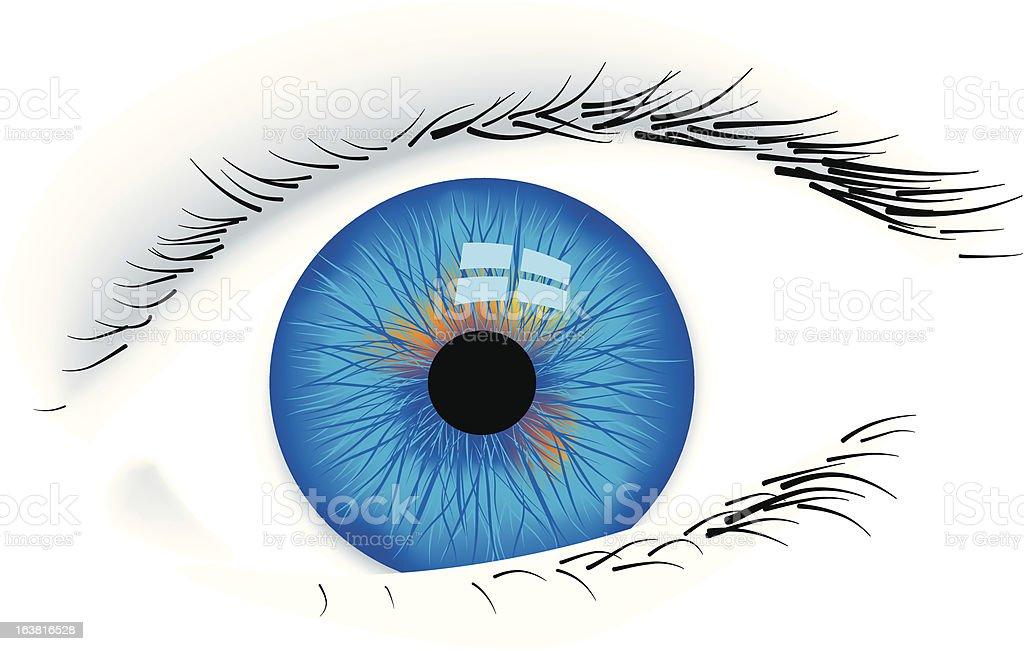 Eye (vector) vector art illustration