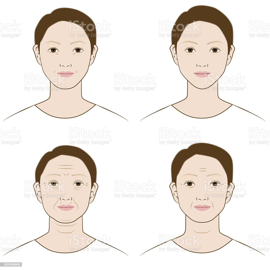 Face, woman, aging vector art illustration