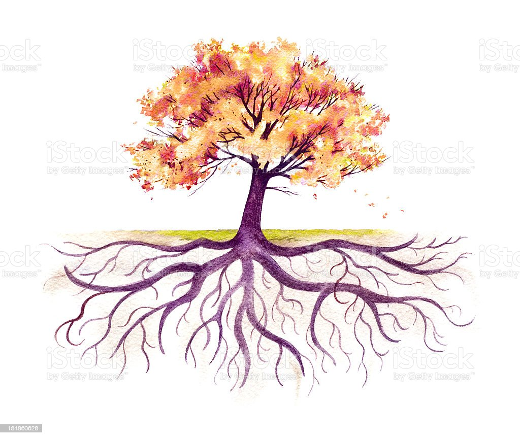 Fall Tree With A Strong Root System vector art illustration
