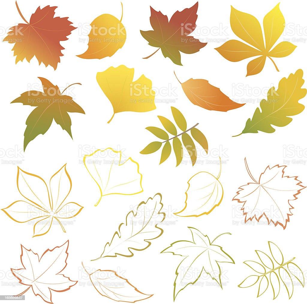 Falling leaves set vector art illustration