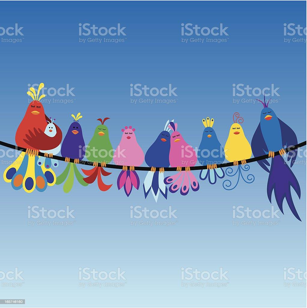Family of birds vector art illustration