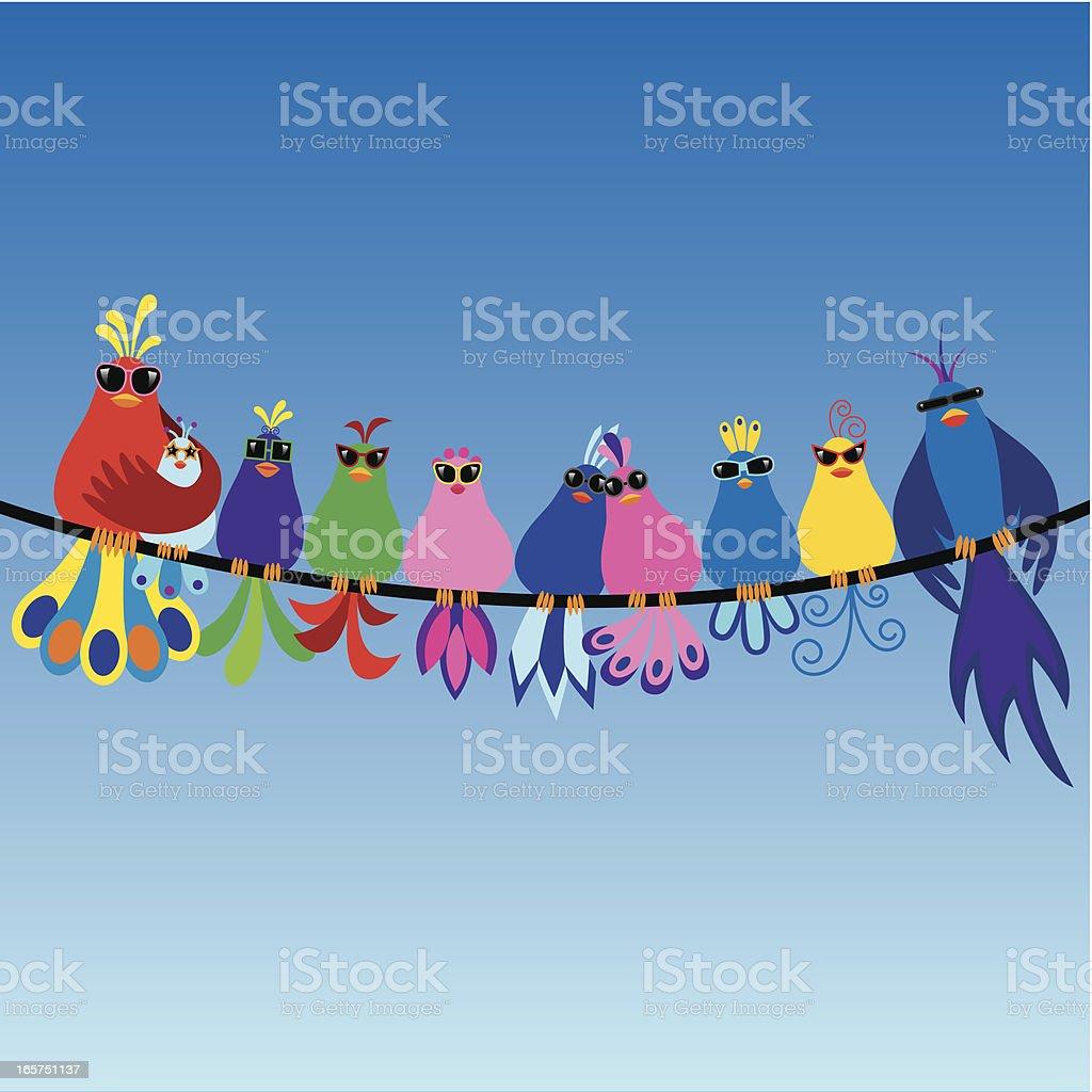 Family of birds wearing sunglasses vector art illustration