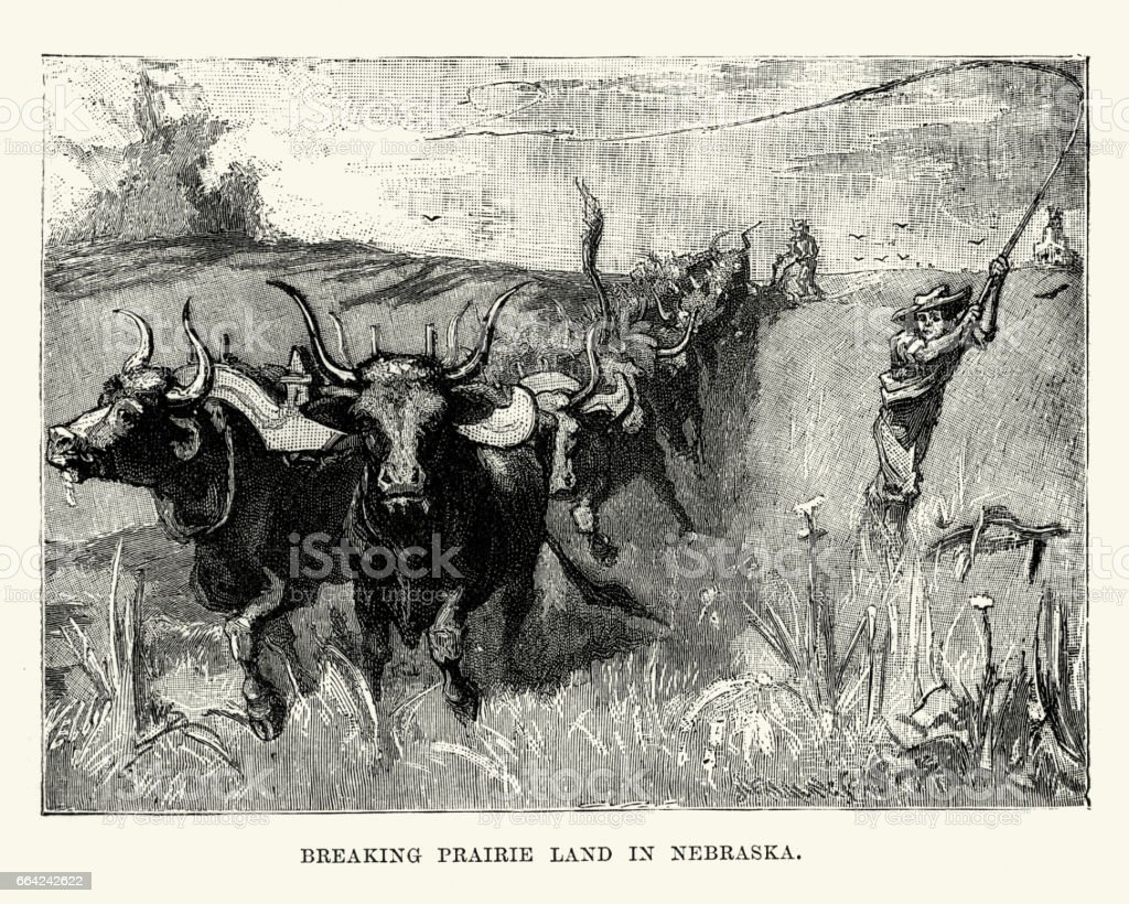 Farmers breaking prairie land in Nabraska, 19th Century vector art illustration