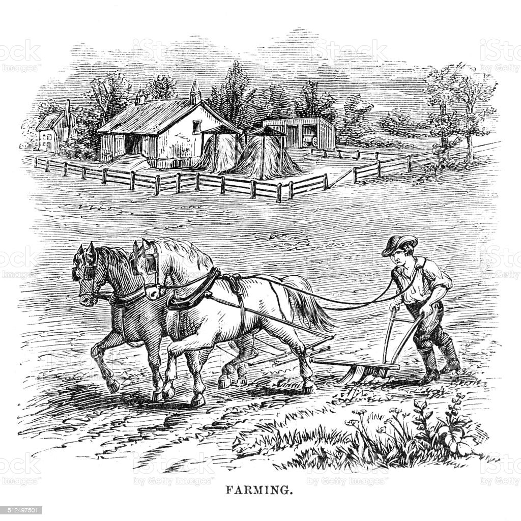 Farming engraving vector art illustration