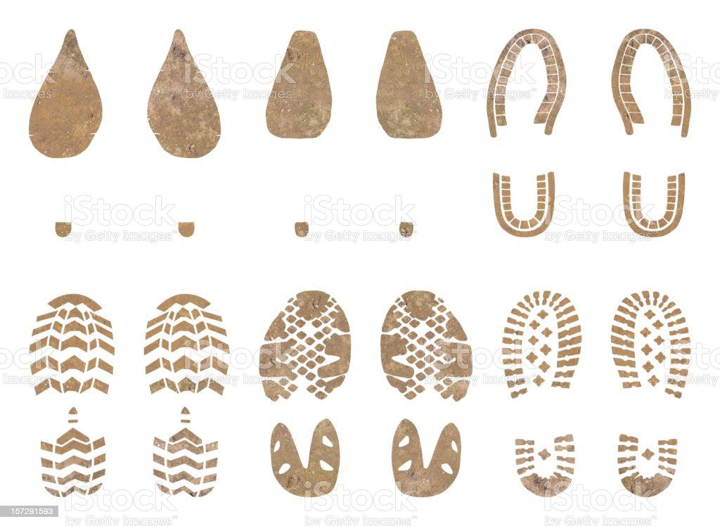 Feet vector art illustration