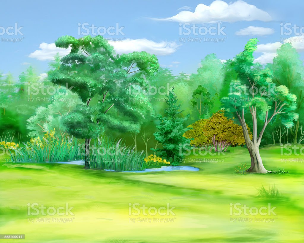 Field at the Edge of the Forest in a Summer vector art illustration