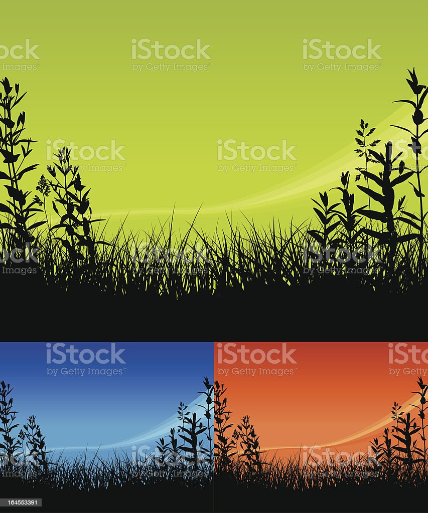 Field Backgrounds royalty-free stock vector art
