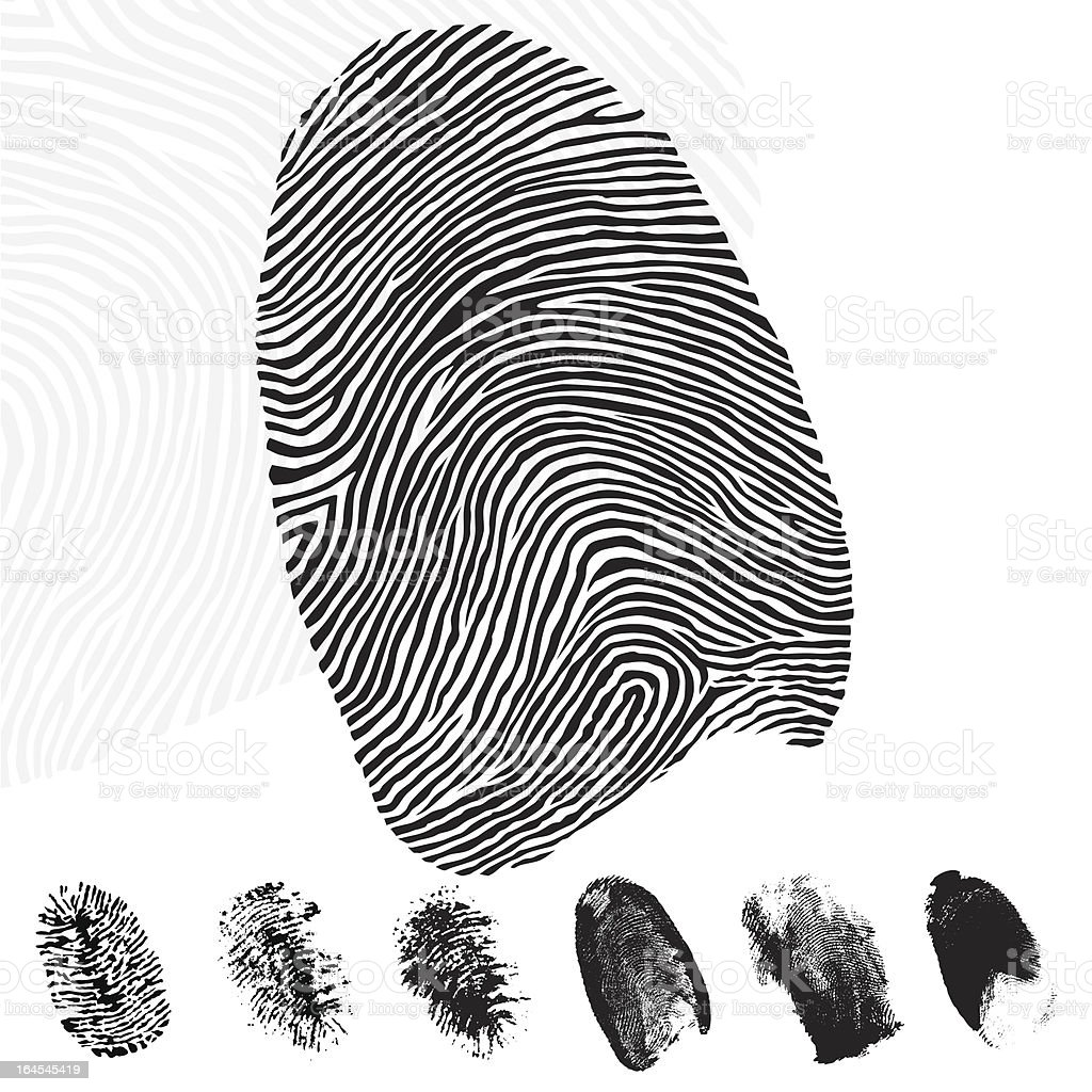 Fingerprints royalty-free stock vector art