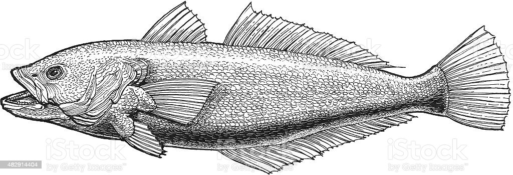 Fish Lizenzfreies vektor illustration