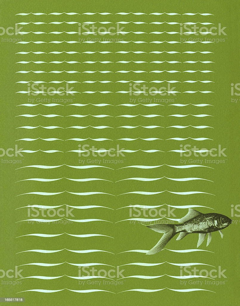 Fish on Green Background royalty-free stock vector art