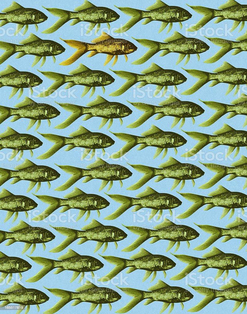 Fish Pattern royalty-free stock vector art
