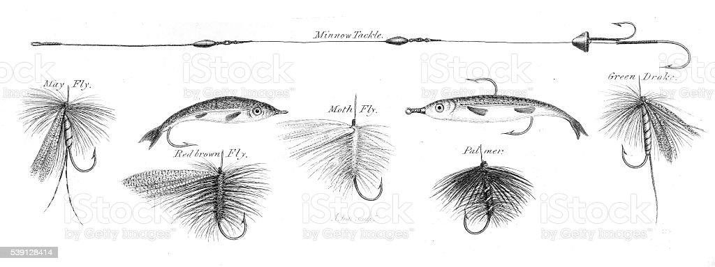 Fishing hooks engraving 1812 vector art illustration