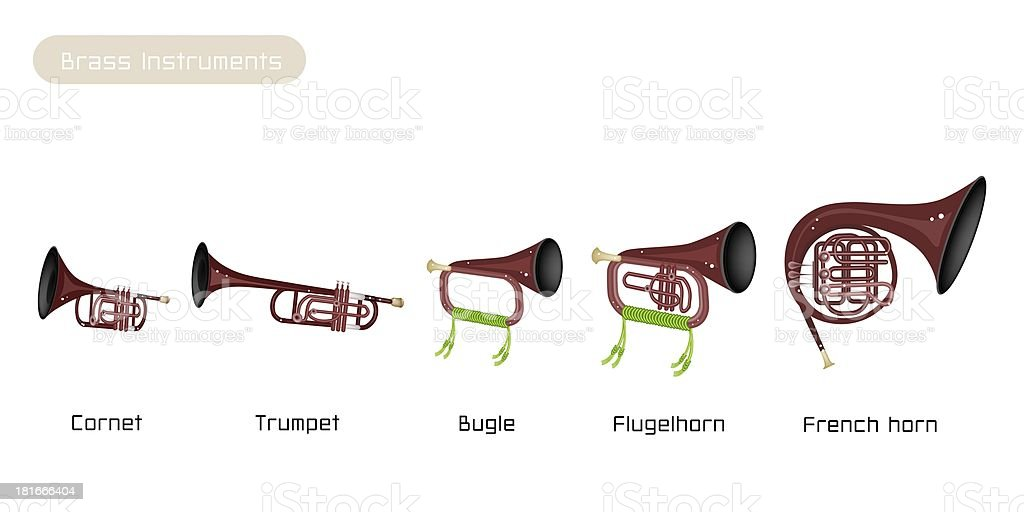 Five Brass Instrument Isolated on White Background vector art illustration