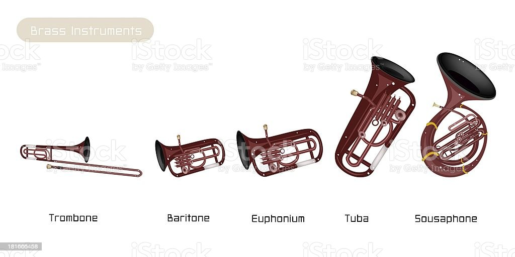 Five Musical Brass Instrument Isolated on White Background royalty-free stock vector art