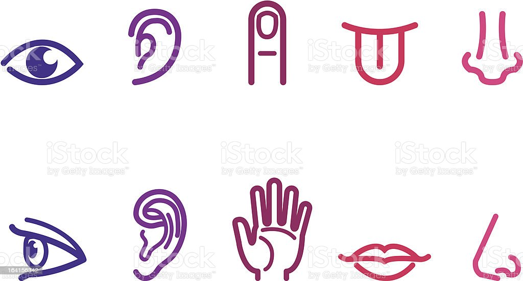 Five Senses Icons vector art illustration