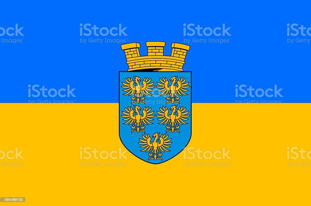 Flag of Lower Austria - Austria. vector art illustration