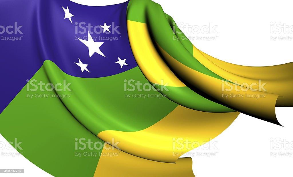 Flag of Sergipe vector art illustration