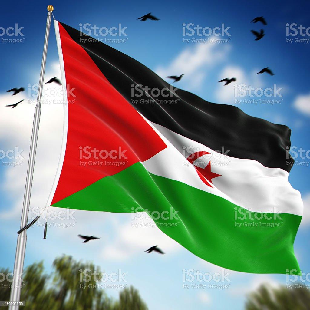 Flag of the Sahrawi Arab Democratic Republic vector art illustration