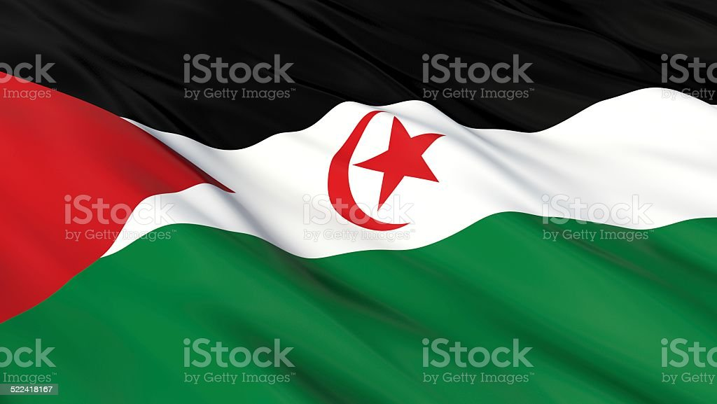Flag of the Sahrawi Arab Democratic Republic (Western Sahara). vector art illustration