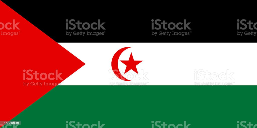 Flag of the Western Sahara vector art illustration