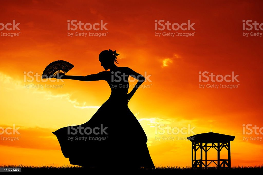 Flamenco silhouette at sunset vector art illustration