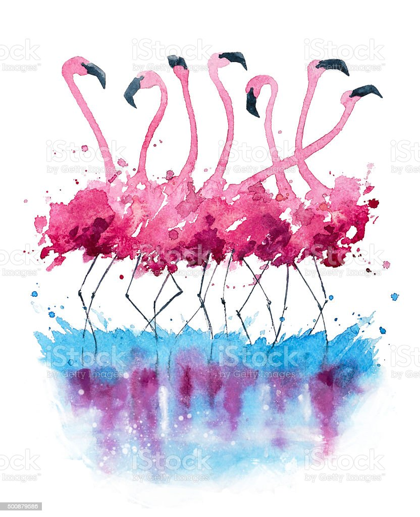 Flamingos watercolor painting vector art illustration